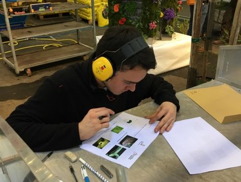 CFAAD45 Nathan SEVIN Medaille d or Horticulture Olympiades des Métiers 2017