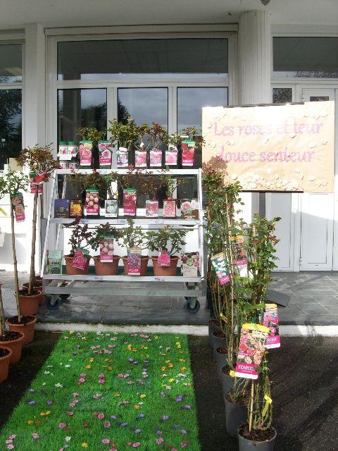 Le chesnoy mises en sc ne de produits de jardin for Vente vegetaux